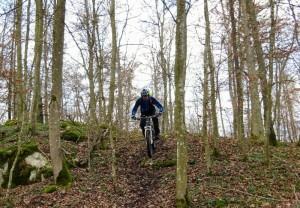Hirschi Trail